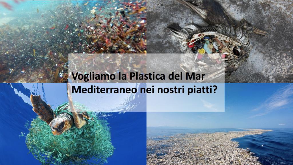 Vogliamo la plastica del Mar Mediterraneo nei nostri piatti?